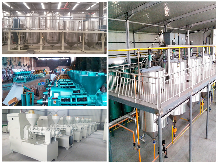 virgin coconut oil making machine, sesame oil extraction machine, moringa oil press mill