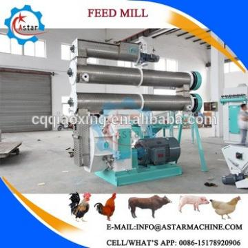 Industrial Animal Poultry Chicken Feed Pelletiser Machine