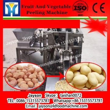 2017 China Hot Sale Fruit and vegetable washer and peeler, mango lemon brush washing machine