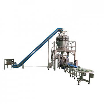 100Kg h Small Medium Snack Food Frozen Potato Chips French Fries Machine Production Line