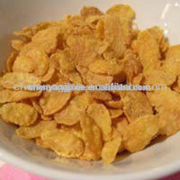 CY breakfast cereals /corn flakes making machine/ Manufacturing plant o