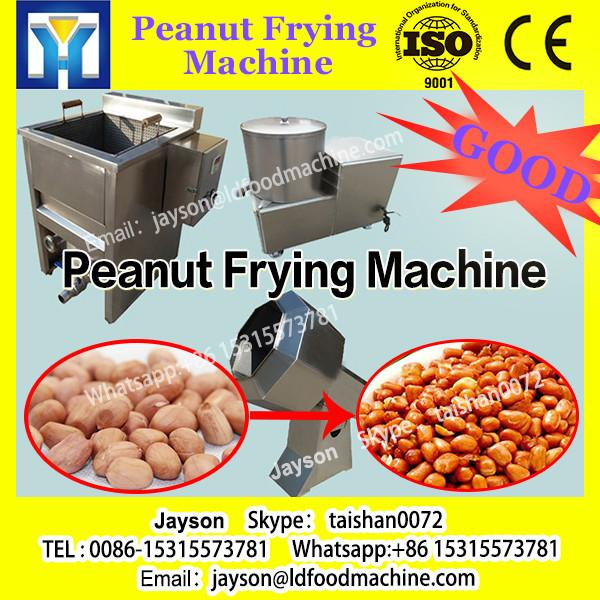 Continuous Stainless Steel Conveying Belt Groundnut Frying Machine