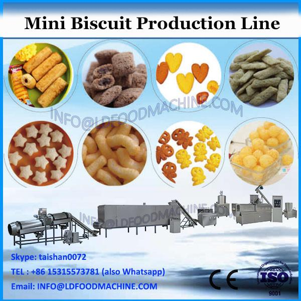 YX480 shanghai factory CE certificated plant full automatic mini biscuit process making machine price