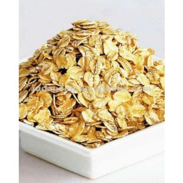 oats corn flakes making equipent /breakfast cereals production machine