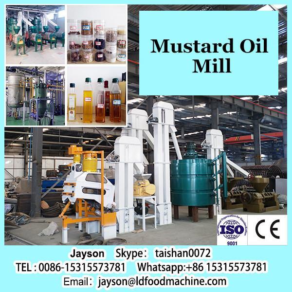 automatic small olive oil press/