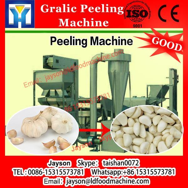 most popular garlic machine garlic powder equipment