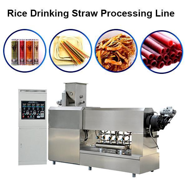 Biodegradable Drinking Straw Straw Machine Drinking Straw Making