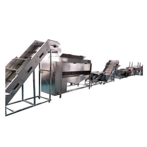 HG frozen french fries production line ce of food processing machine in china